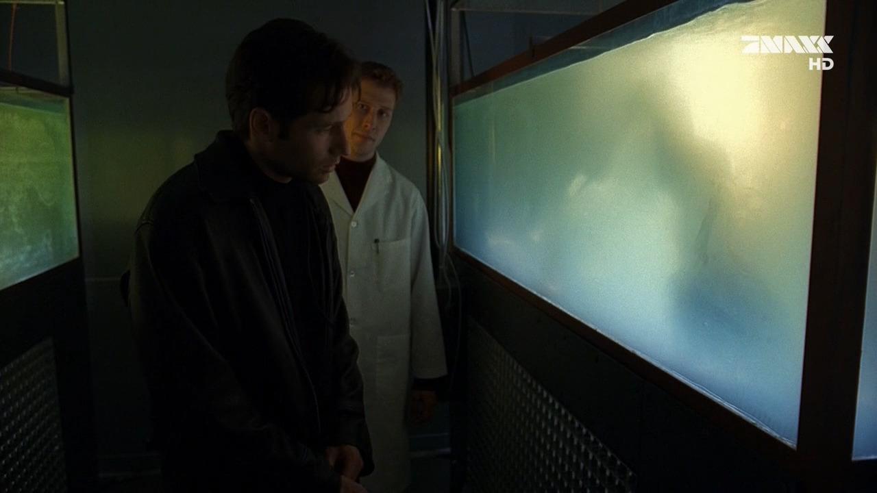 The X-Files — s04e14 — Memento Mori