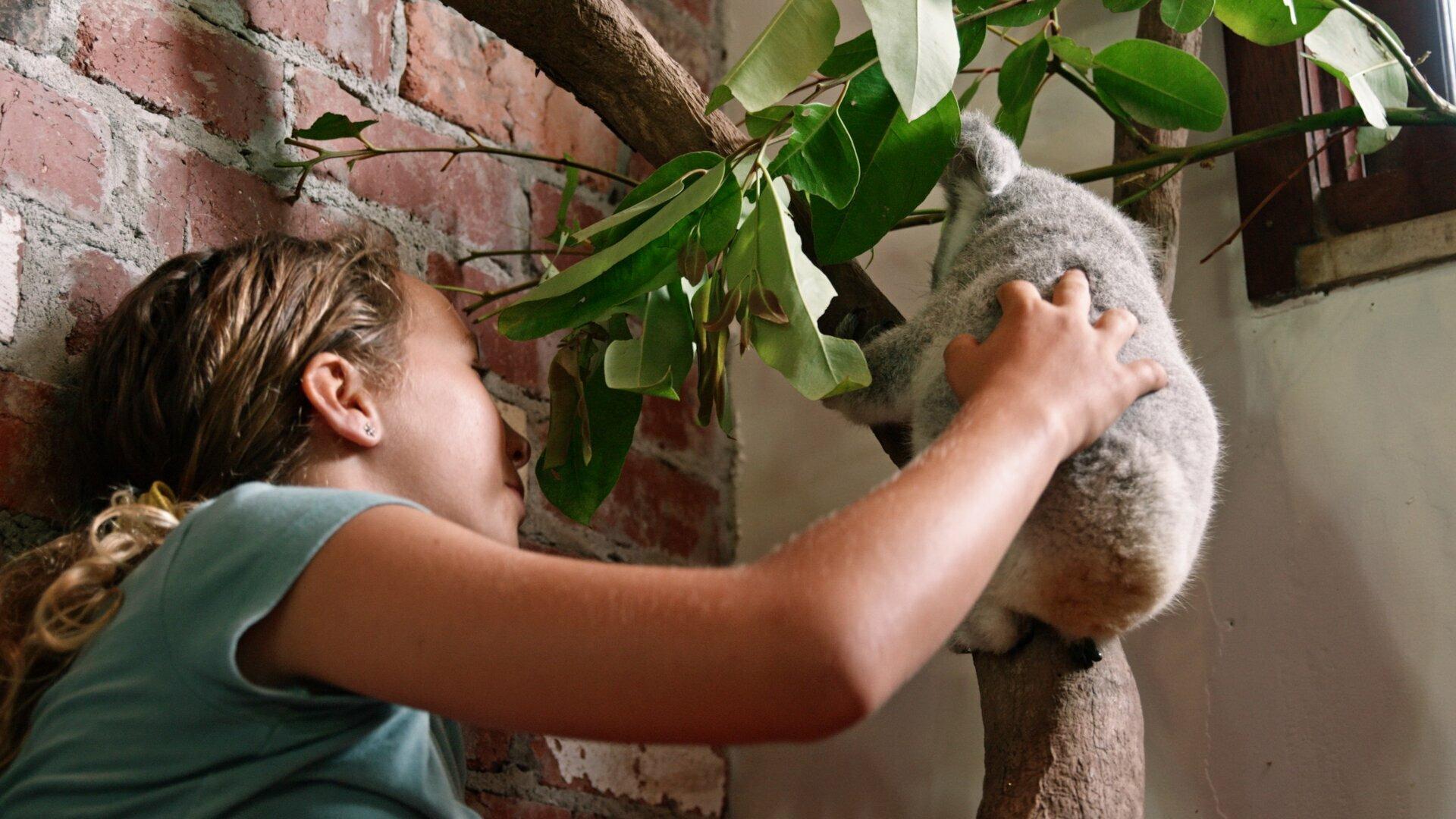 Иззи и коалы — s02e03 — Chompy Learns to Climb