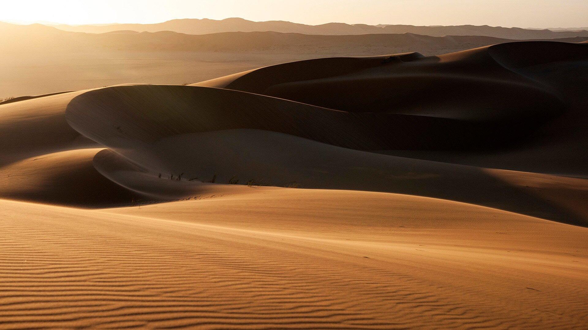 Eden: Untamed Planet — s01e02 — Namib: Skeleton Coast and Beyond