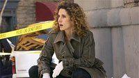CSI: Место преступления Нью-Йорк — s03e13 — Obsession