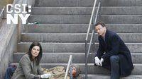 CSI: Место преступления Нью-Йорк — s08e13 — The Ripple Effect