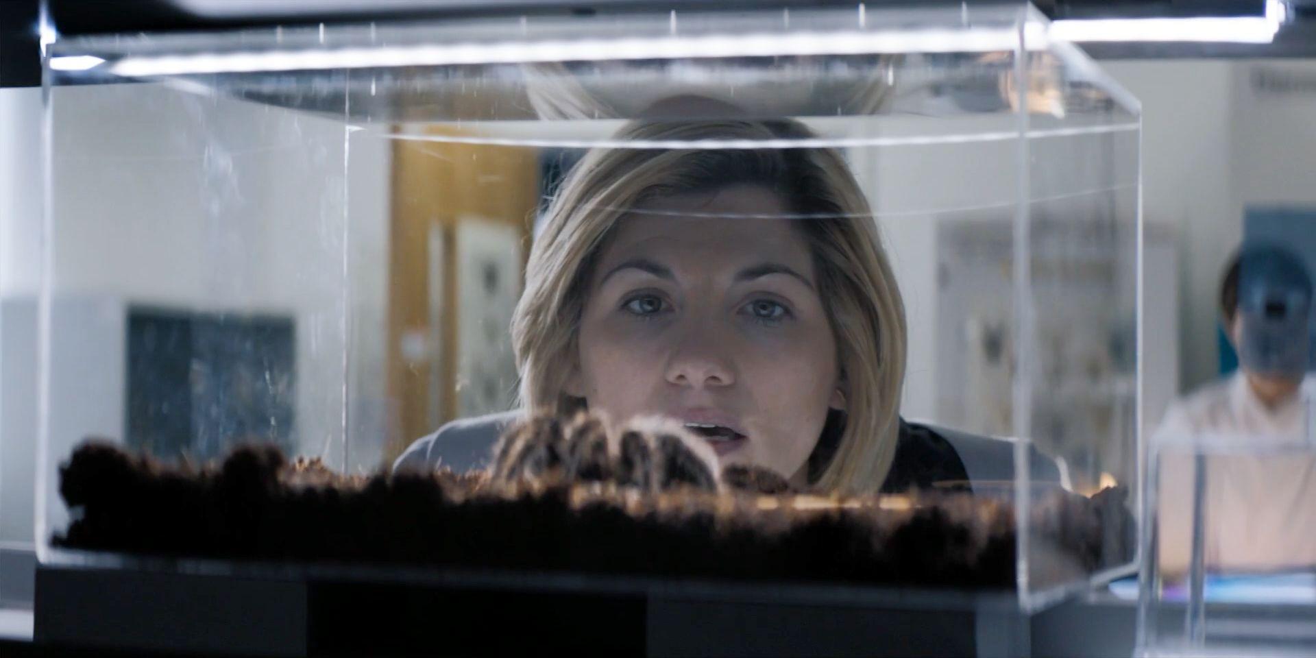 Доктор Кто — s11e04 — Arachnids in the UK