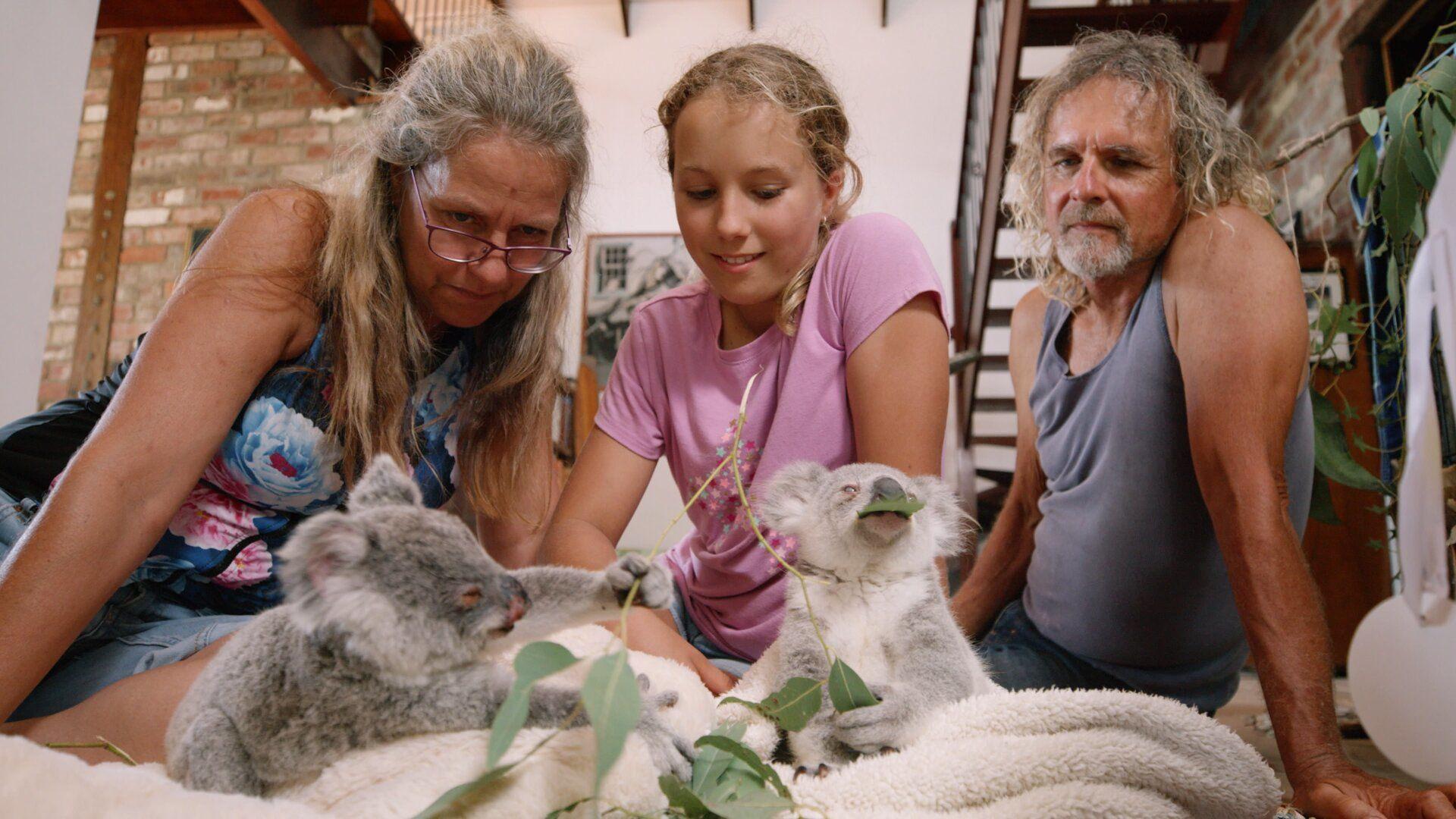 Иззи и коалы — s01e06 — Twinkle's Rescue