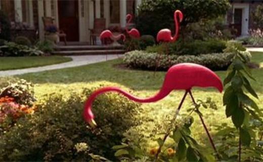 Чудопад — s01e04 — Pink Flamingos