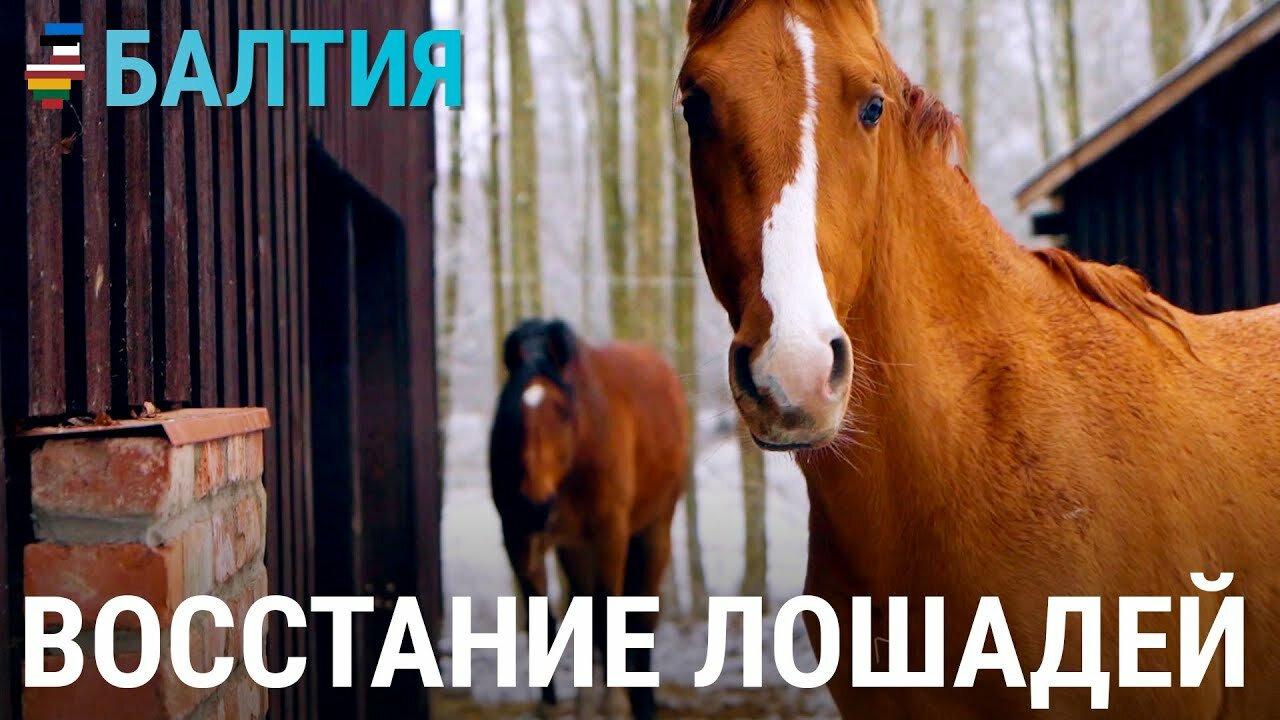 Балтия — s03e04 — Восстание лошадей. История одной латвийской фермы