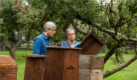 The Henry Ford's Innovation Nation — s07e12 — Best of — Beekeeping