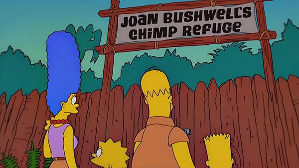 The Simpsons — s12e17 — Simpsons Safari