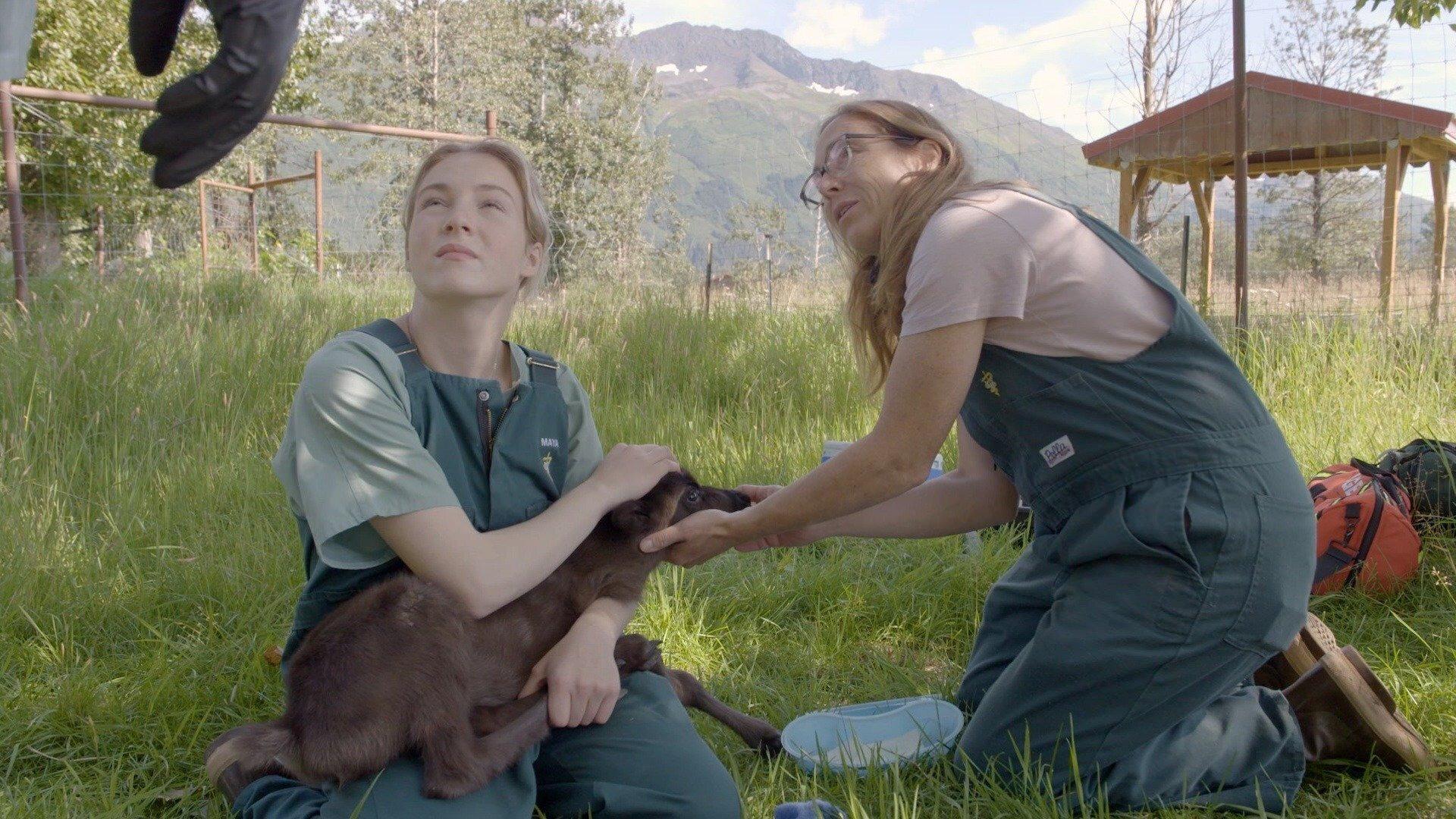 Ветеринар из Юкона — s09e03 — The Very Hungry Reindeer