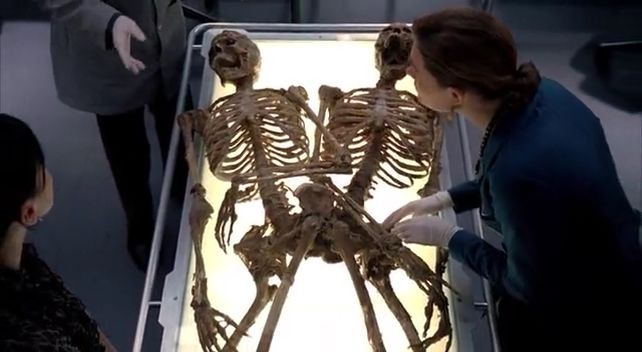Bones — s04e12 — Double Trouble in the Panhandle