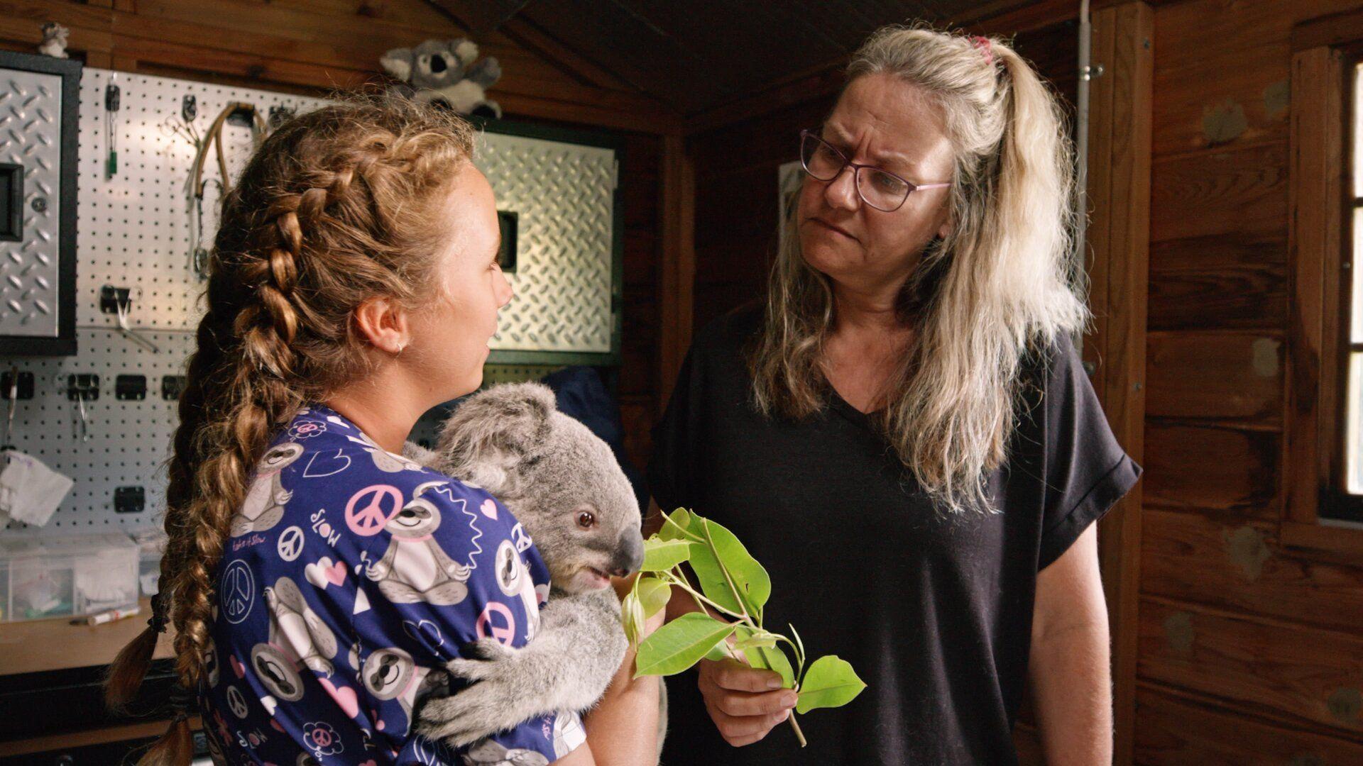 Izzy's Koala World — s01e08 — Goodbye Leia