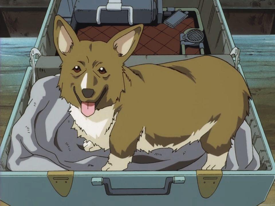 Ковбой Бибоп — s01e02 — Stray Dog Strut