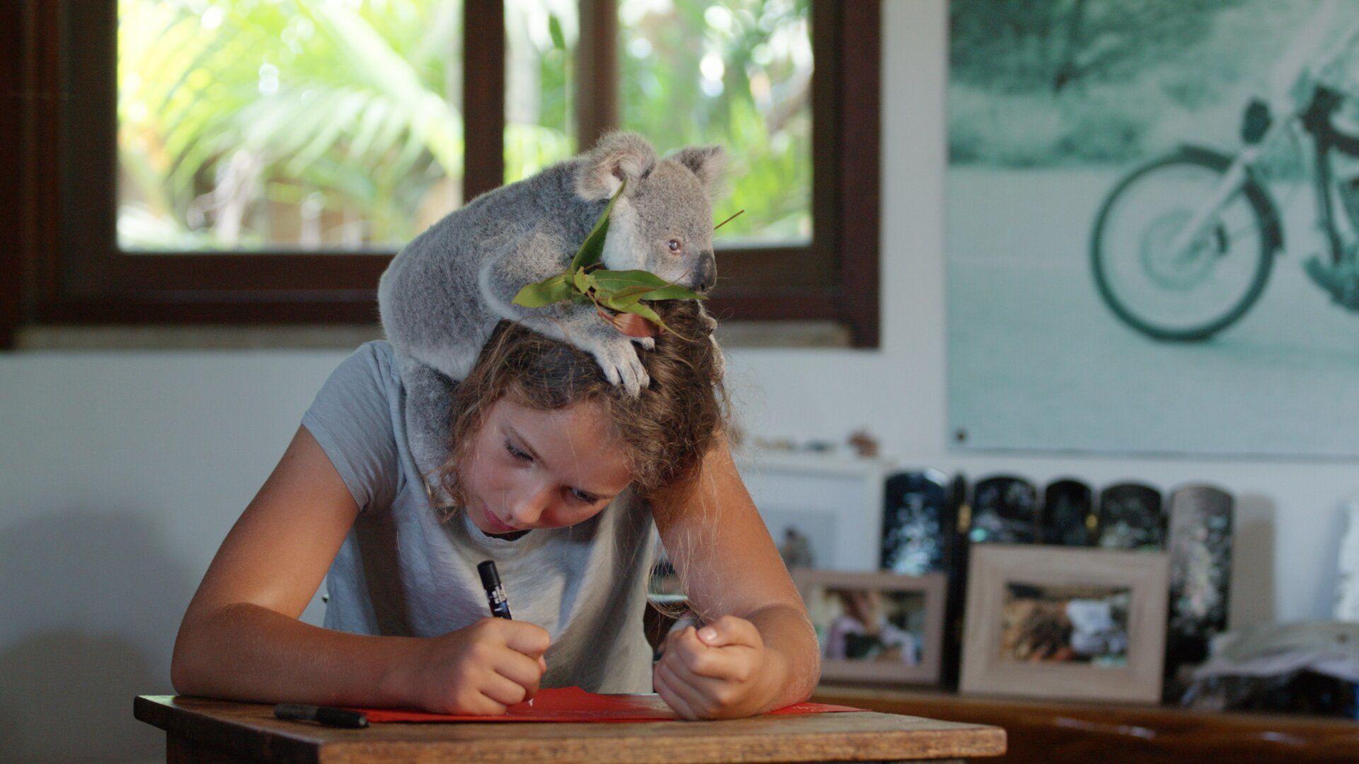 Иззи и коалы — s01e02 — Baby Chompy