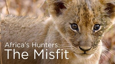 Africa's Hunters — s01e04 — The Misfit