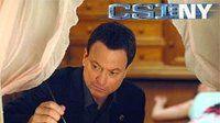 CSI: Место преступления Нью-Йорк — s03e12 — Silent Night