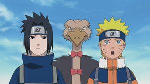 Naruto: Shippuuden — s09e06 — Naruto's School of Revenge