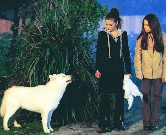 Charmed — s03e21 — Look Who's Barking