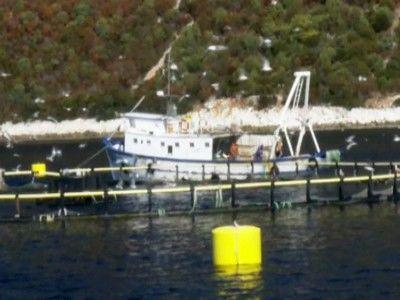 Anthony Bourdain: No Reservations — s08e03 — Croatian Coast