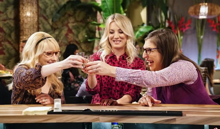 The Big Bang Theory — s11e20 — The Reclusive Potential