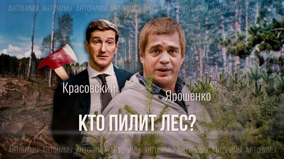 s01e16 — Вырубка, лесные пожары и чёрные лесорубы. Мнение Greenpeace России