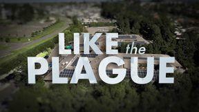 s2020e20 — Like the Plague