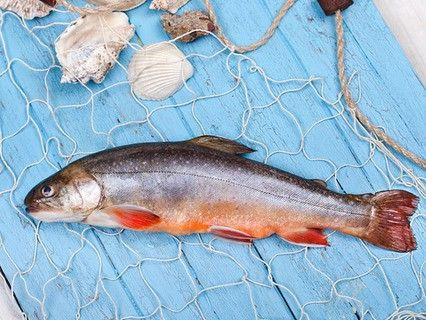 s05e17 — 156 Новости рыбного рынка