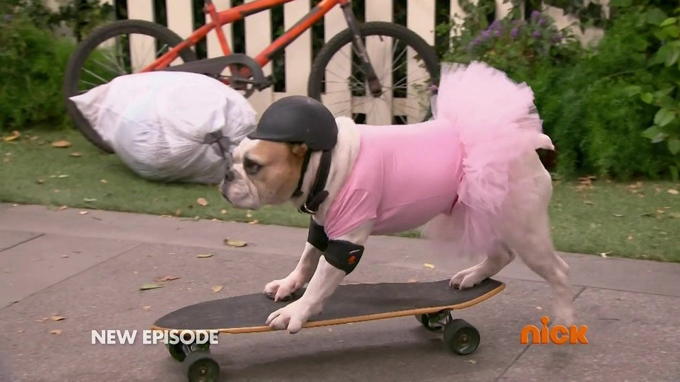 s03e15 — Dog Day After-school