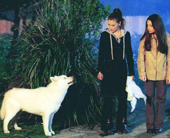 s03e21 — Look Who's Barking