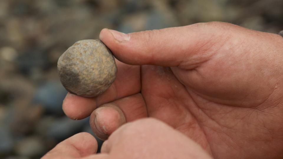 s08e19 — A Loose Cannonball