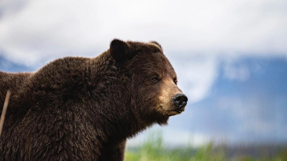 s01e06 — Alaska: Last American Frontier