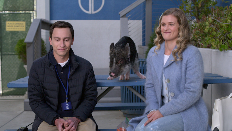 s04e07 — Channel the Cat