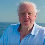 David Attenborough — Presenter