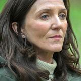 Michelle Fairley — Marian Wallace