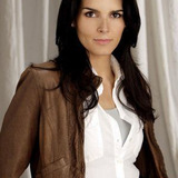 Angie Harmon — Lindsay Boxer