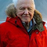 David Attenborough — Narrator