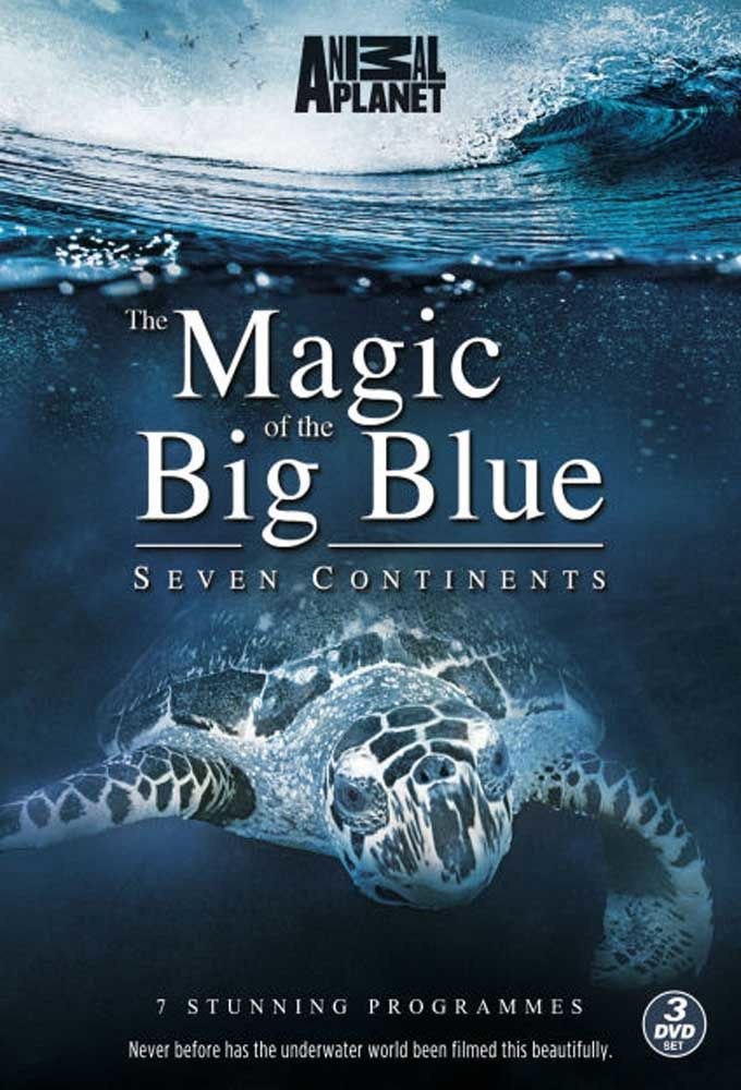 Show The Magic of the Big Blue