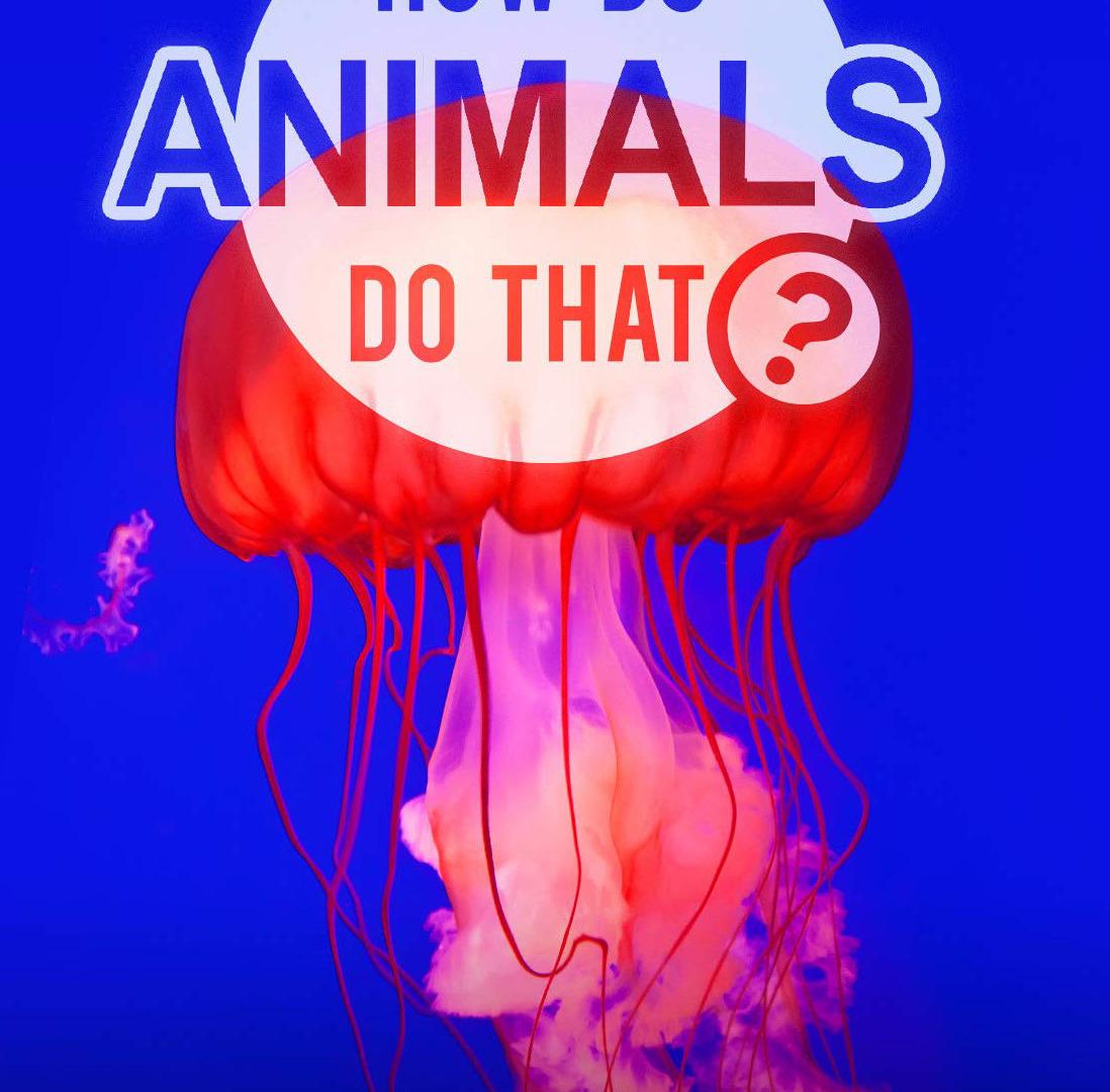 Show How Do Animals Do That?