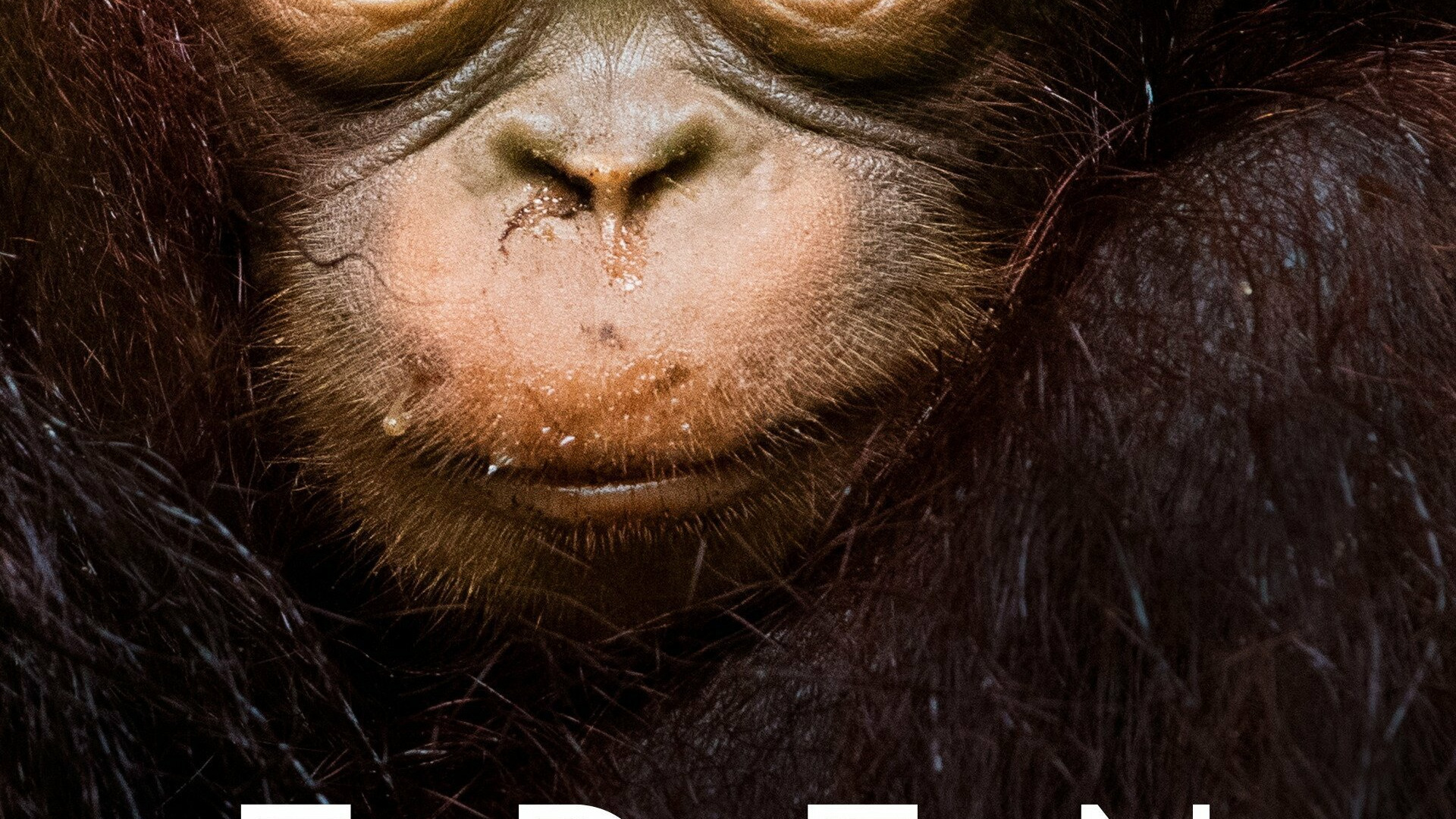 Сериал Eden: Untamed Planet