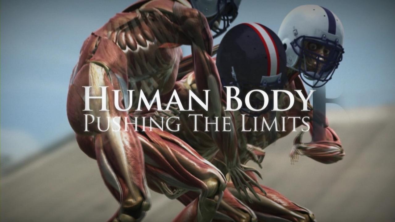 Show Human Body: Pushing the Limits
