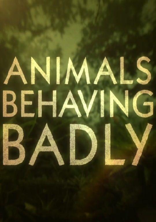 Show Animals Behaving Badly