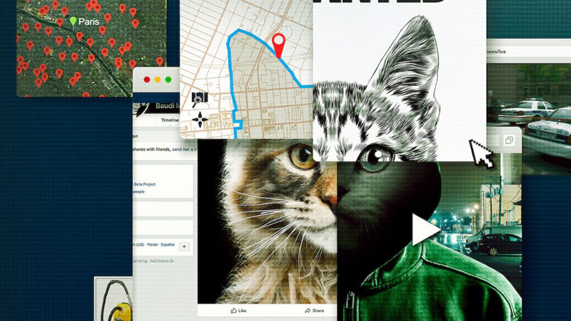 Сериал Не троньте котиков: Охота на интернет-убийцу