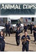 Show Animal Cops: Phoenix