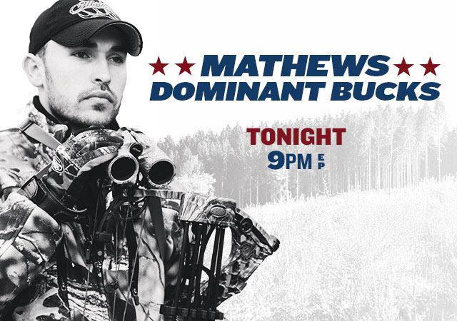 Show Mathew's Dominant Bucks