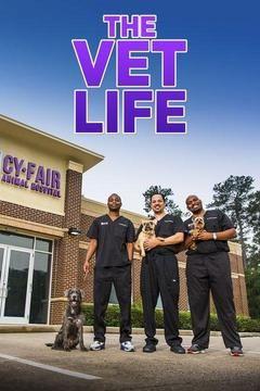 Show The Vet Life