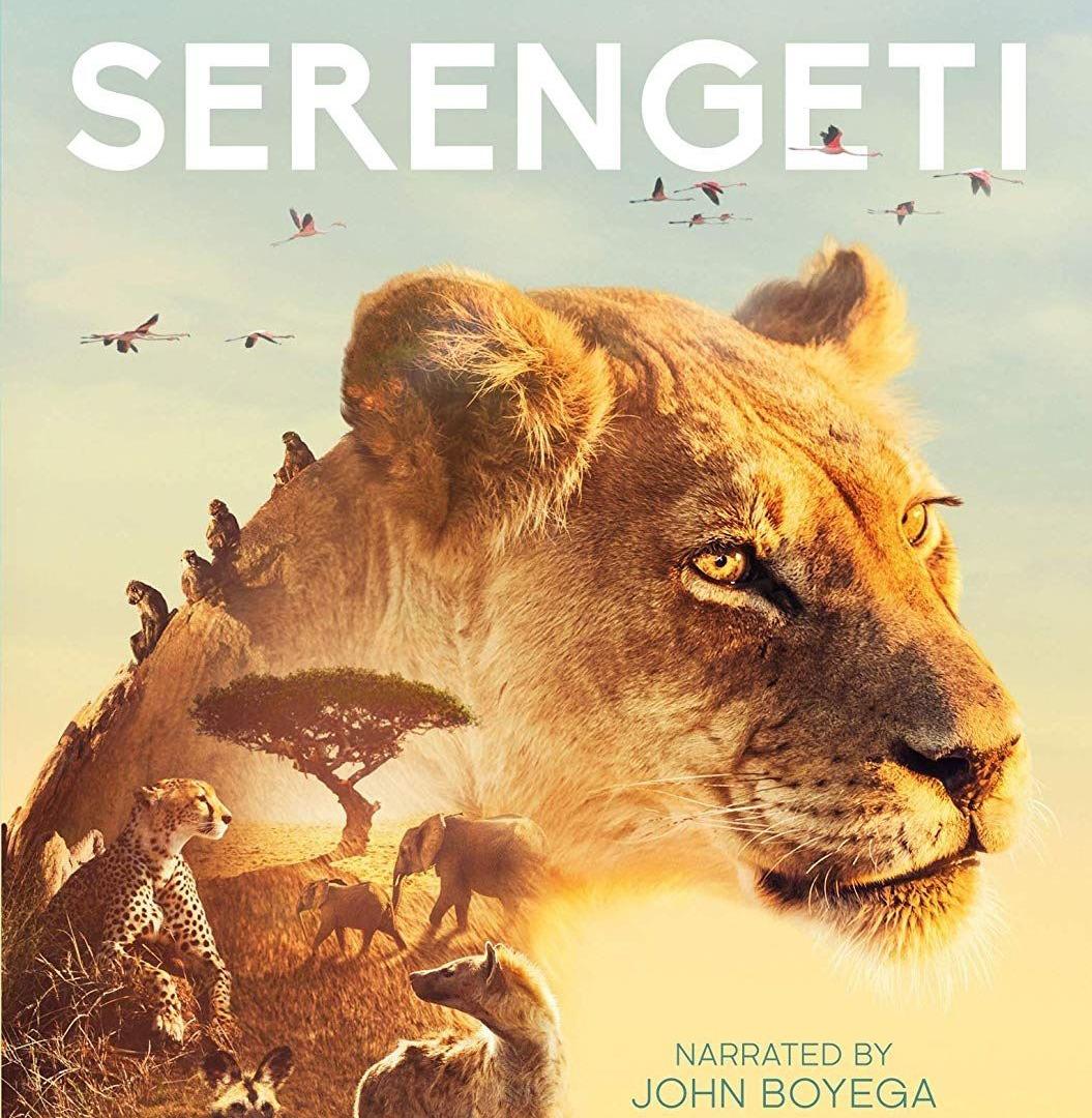 Show Serengeti