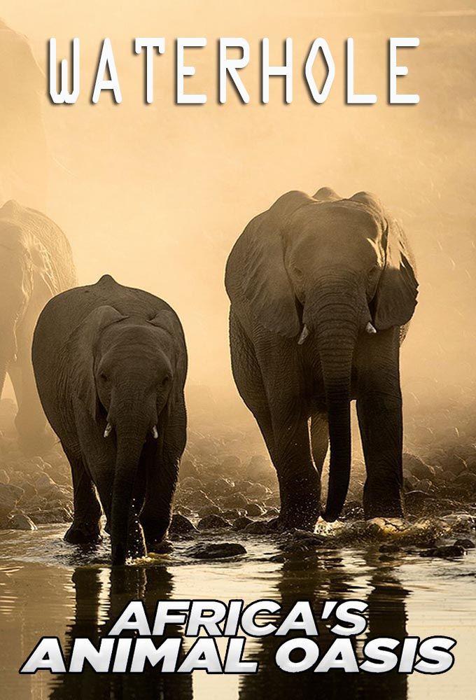 Show Waterhole: Africa's Animal Oasis