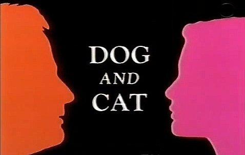 Сериал Пес и кот