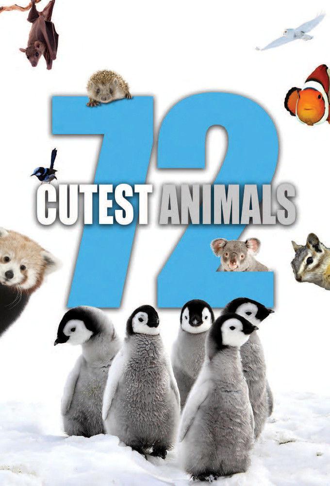 Show 72 Cutest Animals