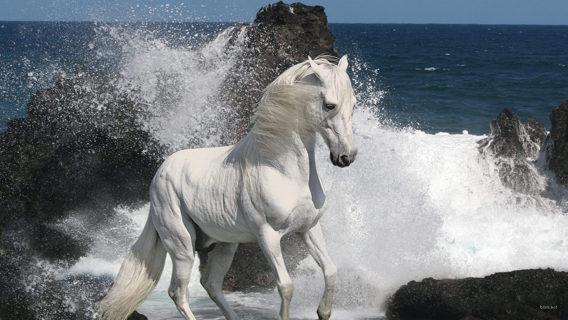 Сериал Horsepower With Martin Clunes