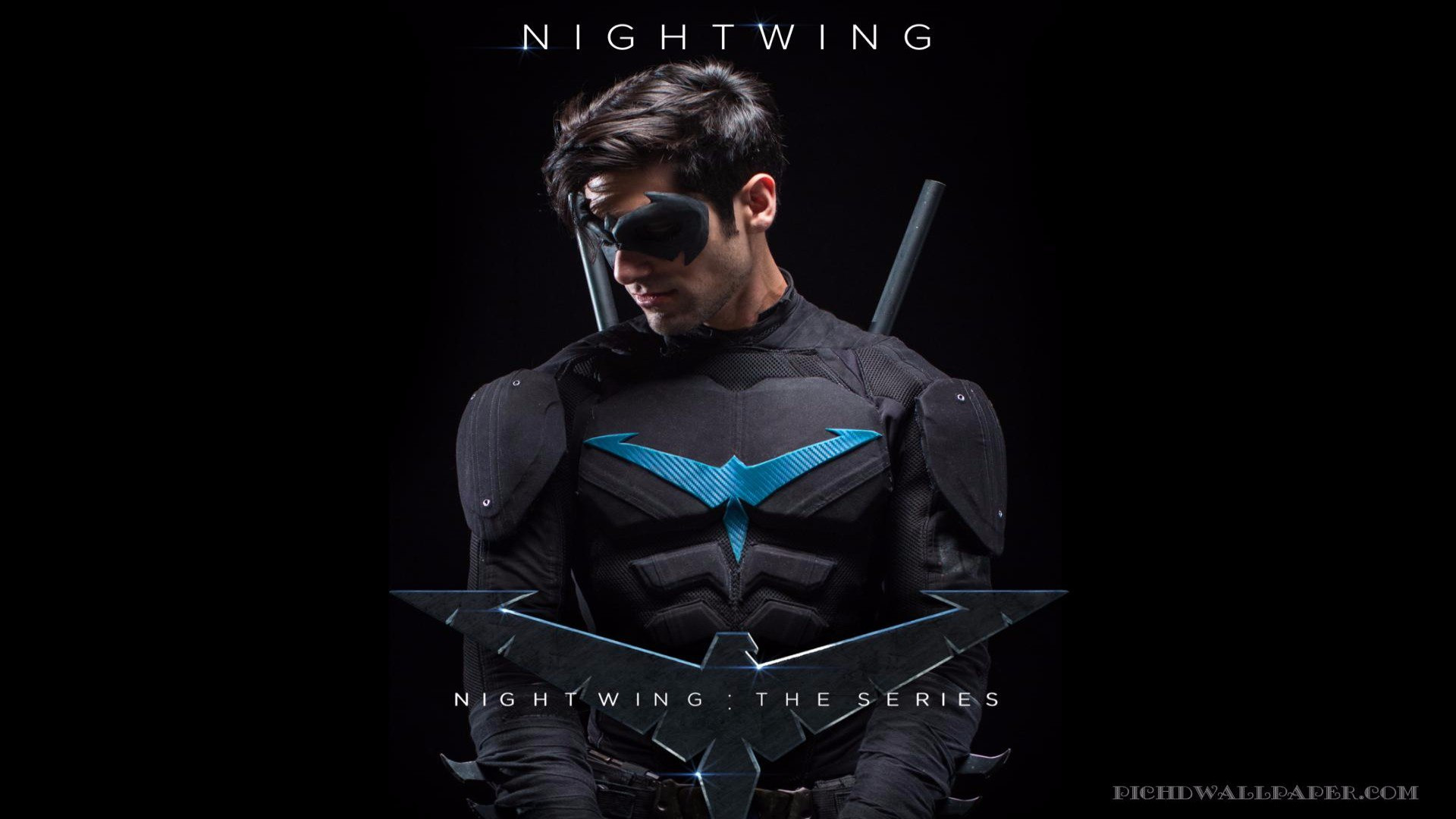 Show Nightwing: The Series
