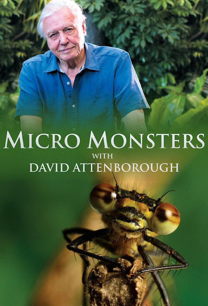 Show Micro Monsters with David Attenborough